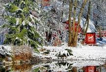 Christmas / by James Colburn