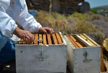 Greek Islands - Honey