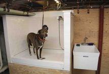 Dog bath station.