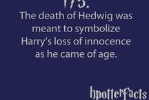 HP(and other geeky things)<3 / by Natalie Meeks