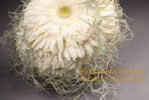 Flores y algo más / Flores ,plant as are gloss florales