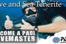 Diving in Tenerife Special Offers / Samples of our images showing Special Offers on our diving trips in Tenerife