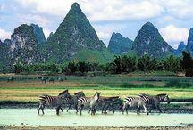 Tanzania-Zanzibar / Descubre Tanzania y Zanzibar con Amedida Travel Marketing