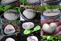 Grow your food! :) / by Kezzie Woodbury