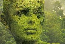Greening our world