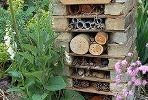 домик насекомых