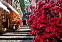 Bellagio Lake of Como / Discover Bellagio with Personal Trainer.....save time, stay focused, get results