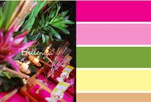 Color Palettes / by jilbert's Bits of Bytes