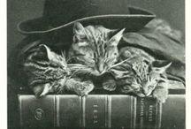 Books I love you