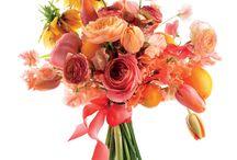 Orange You Glad / Orange & Apricot Bouquets / by Elizabeth Jackson