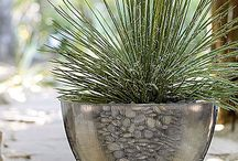 Spiky gardens
