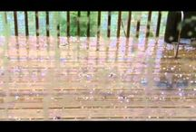 Weather Videos
