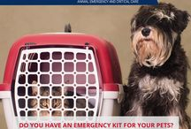 Pet Emergency Preparedness / Are you and your pets prepared for a disaster? Here are some tips to help you get prepared for emergencies and disasters that can happen at any time.
