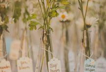 svatby a oslavy
