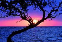 Sunset&Sunrise