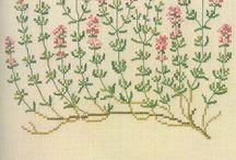 Zioła- haft kryżykowy