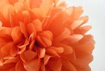 color me orange / by Juliana Kerrest