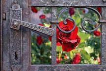 Green and Red Garden