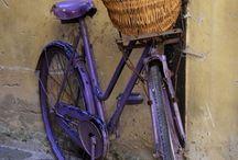 bicycle/bisikletler