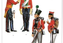 Danish Napoleonic Period Regiments