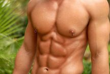 Sculpted Muscle