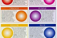 Colour / The influence and the energy of Colour in our interior spaces