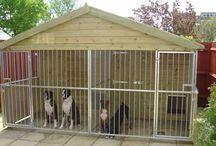 kutya kennel