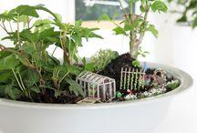 Mini Gardening & Miniaturgärten   NOCH kreativ / Mini Gardening, Miniaturgärten und kleine Miniaturwelten. Liebevoll gestaltete DIYs mit wunderschönes Deko-Zubehör ausgeschmückt und teilweise um echte Blumen und Pflanze ergänzt!
