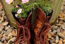 blommor trädgård örter