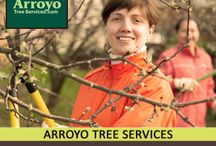 Tree Service Company / by Arroyo Tree Services