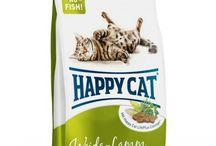 Kedi petshop ürünleri / En kaliteli ve en ekonomik kedi petshop ürünlerimiz. Kedi maması, tarak,fırça, mama ve su kapları gibi kedinizin ihtiyaç duyacığı her şey online petshopumuzda