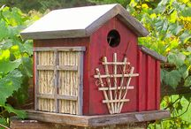 BirdHouses / by Tennette Curry