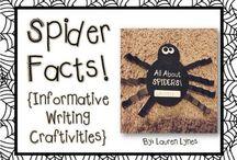 Spiders / by Megan Duarte
