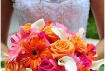 Stacy's Wedding / by Ellen Marts