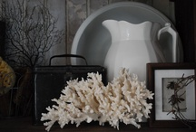Decor Inspirations / Decorating ideas for home and business / by Brenda Gauze