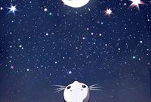 luna e stelle