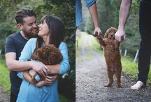 Dog and family photo shoot ideas