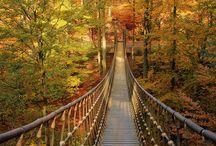 Brücke Tür und Weg