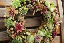 Outdoors - Wreaths