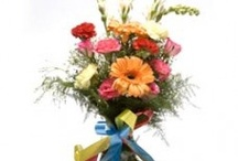 Siblings Day / by Florists In India