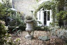 Garden Notes / by Lora Stevenson