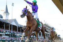 Kentucky Derby, Preakness, Belmont / by Sara Schultz