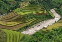 Sapa / Las montañas de Sapa, al norte de Vietnam
