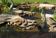 creative gardening / by LeAnn Ouwinga