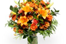 Flowers Coupons / Get verified Flowers Coupons, coupon codes, online coupons, promotional codes, promo offers, and discount deals for online shopping Save money online with Hub 4 Deals