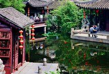 New life In Suzhou