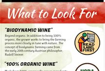 """Green Wine / The world of """"green wine"""" or sustainably grown, processed, and packaged wines is a growing industry. Here is everything green wine we found and love on the internet!"""