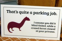 Funny. / by Melinda Sirstins