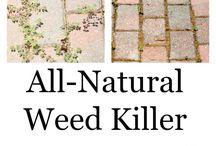 Weed killer to make