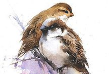 Sparrow bird watercolor print / #Bird art sparrow watercolor print with amazing bird feather watercolor texture. An exceptional wall #decor #sparrow painting gifting idea for bird and nature art lover. This art has variety of option such as bird print on canvas in different size, poster #print, mobile case print and many more high quality bird art watercolor prints.